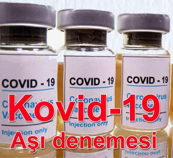 Oxford-AstraZeneca'nın Kovid-19 aşı adayının son denemesi