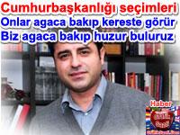 Cumhurba�kanl��� se�imleri Selahattin Demirta�: Onlar agaca bak�p kereste g�r�r biz agaca bak�p huzur buluruz